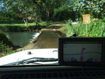 Stream on Road